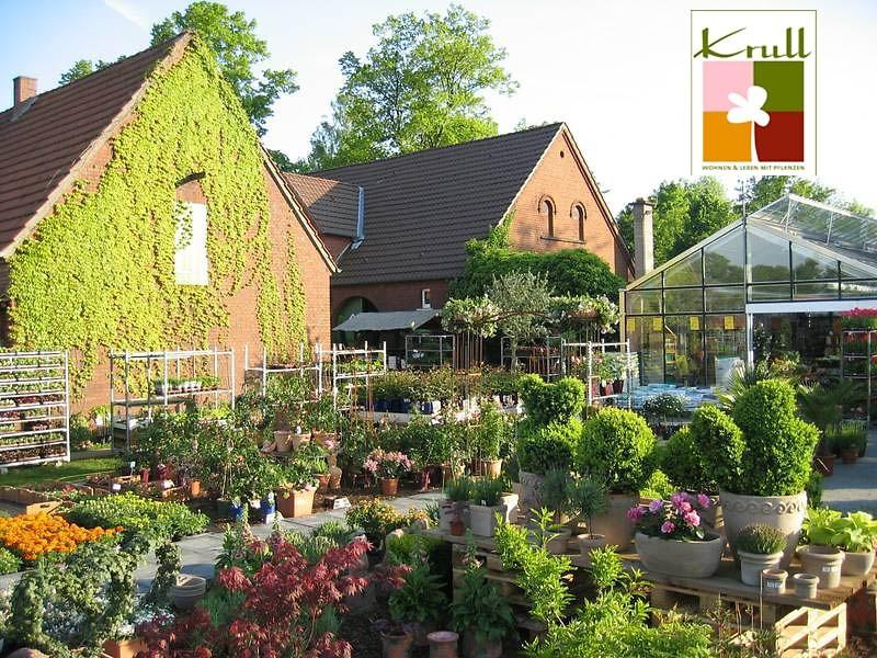 gutschein krull wohnen leben mit pflanzen 25. Black Bedroom Furniture Sets. Home Design Ideas
