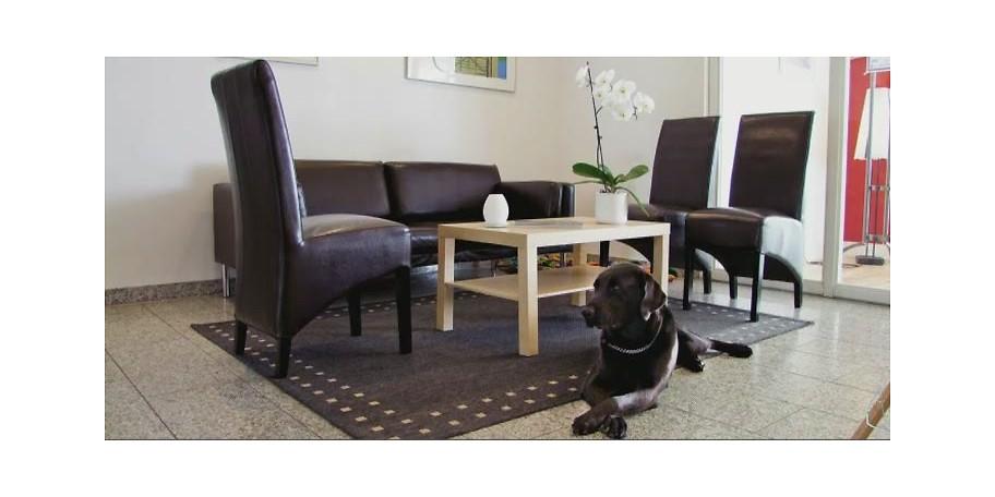 gutschein hotel lauterbach am see 275 statt 594. Black Bedroom Furniture Sets. Home Design Ideas