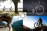 Gutschein für Die Adresse für Fahrrad-Begeisterte  von BIKESYNDROM