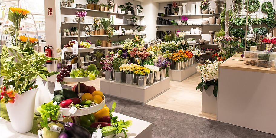 Gartendekoration für jeden Geschmack bei Möbel Heinrich in Hameln