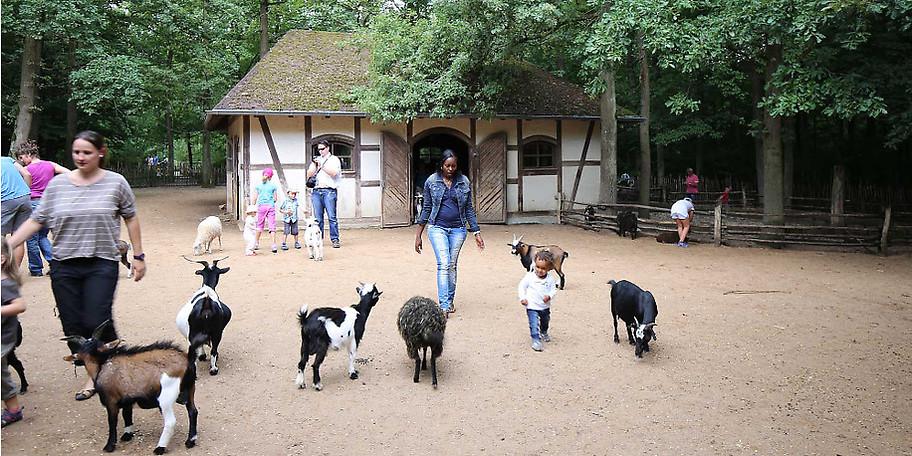 Der Wildpark Bad Mergentheim ausschließlich auf heimische Wild- und Haustierarten ausgelegt