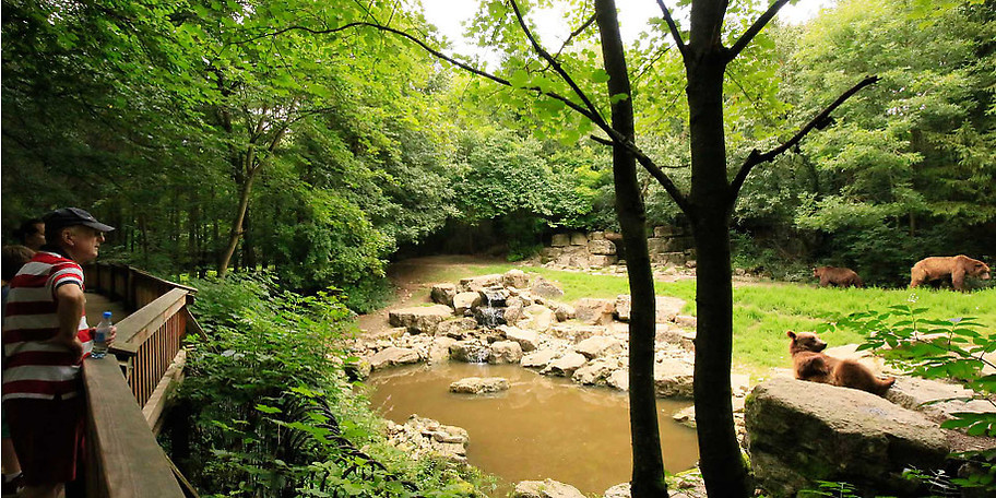 Für Natur- und Tierliebhaber ist der Wildpark Bad Mergentsheim immer einen Besuch wert