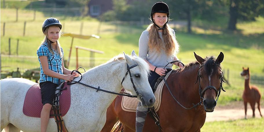 Unsere Pferde sind für einen kleinen Ausritt immer zu haben