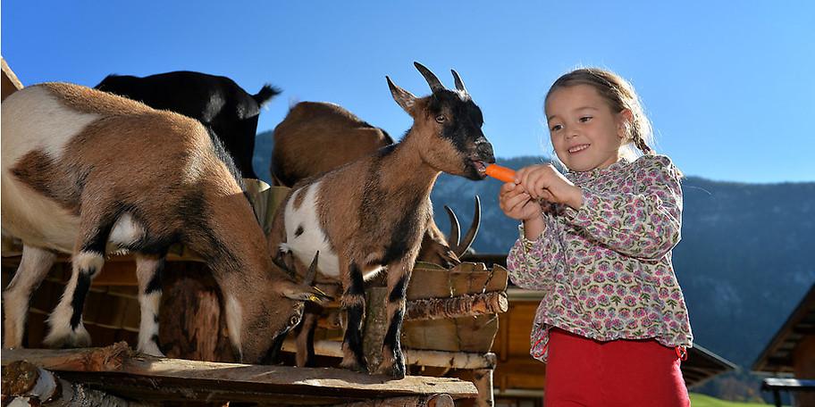 Die Natur genießen mit der ganzen Familie – im KinderHotel POST in Österreich