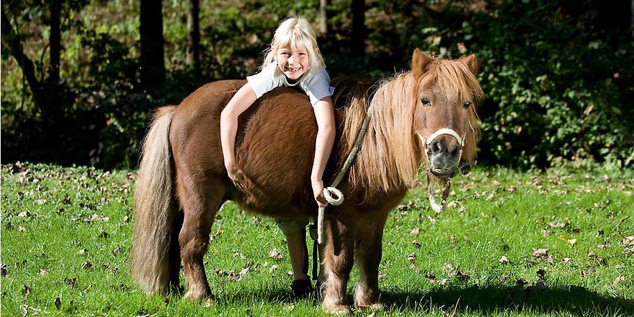 Reiterferien für die ganze Familie: Auf der POST-Ranch im KinderHotel POST