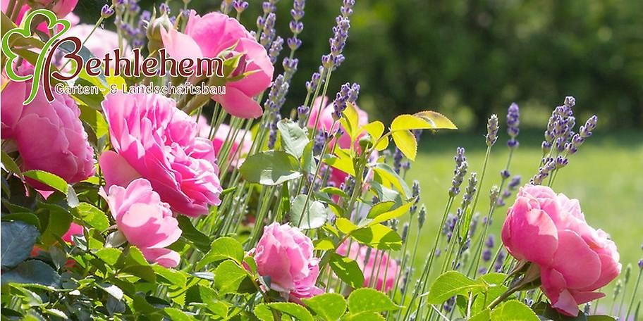 Willkommen im Gartencenter Bethlehem