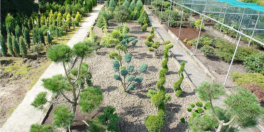 Wenn Sie kompetente Partner und Fachleute rund um das Thema Garten und Landschaftsbau suchen, dann sind Sie bei uns richtig