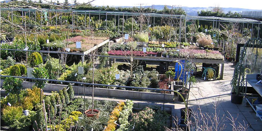 Auf über 10.000 m² finden Sie alles was das Gärtner Herz begehrt