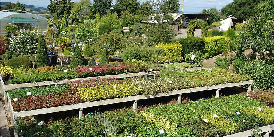 Große Auswahl an heimischen und importierten Pflanzen aus aller Welt