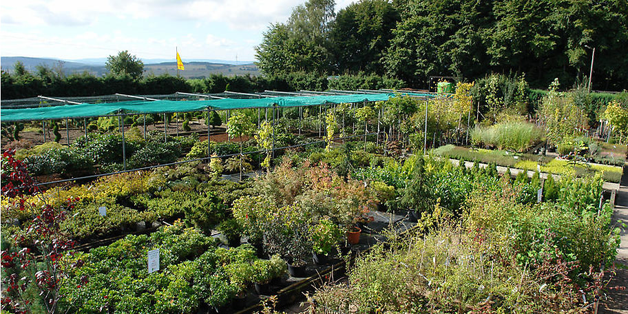 Wir planen für Sie Ihren gesamten Garten oder aber auch nur kleine Teile