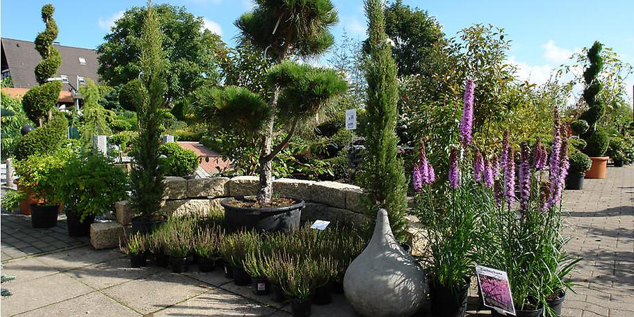 Wir planen für Sie Ihren gesamten Garten