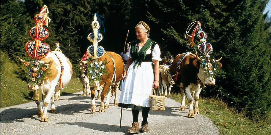 Sennerin und Kühe mit Fuikln