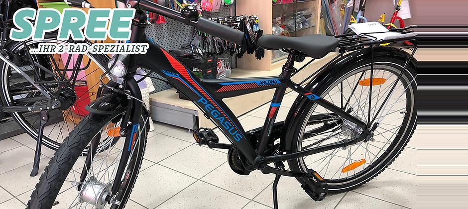 Gutschein für Ein Pegasus Arcona Alu Jugendrad zum halben Preis! von 2 Rad Spree