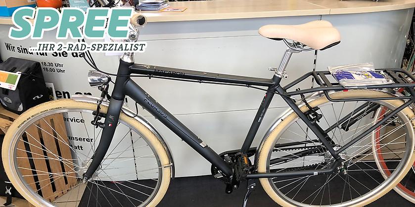 Gutschein für Ein Pegasus Macaron Belt RH 61 Trekkingrad zum halben Preis! von 2 Rad Spree