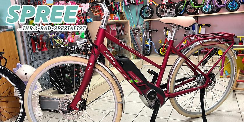 Gutschein für Ein Pegasus Macaron E Damen E-Bike zum halben Preis! von 2 Rad Spree