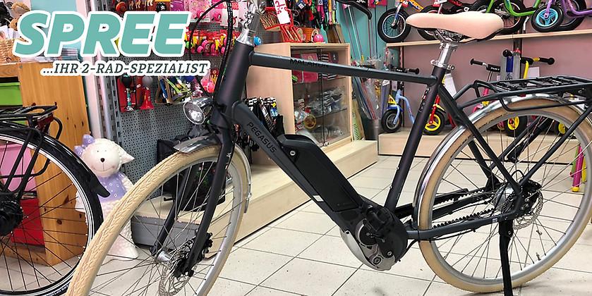 Gutschein für Ein Pegasus Macaron E Herren E-Bike zum halben Preis! von 2 Rad Spree