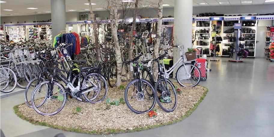 Neben Mountainbikes, Kinderrädern und Rennrädern stehen auch E-Bikes im Fokus